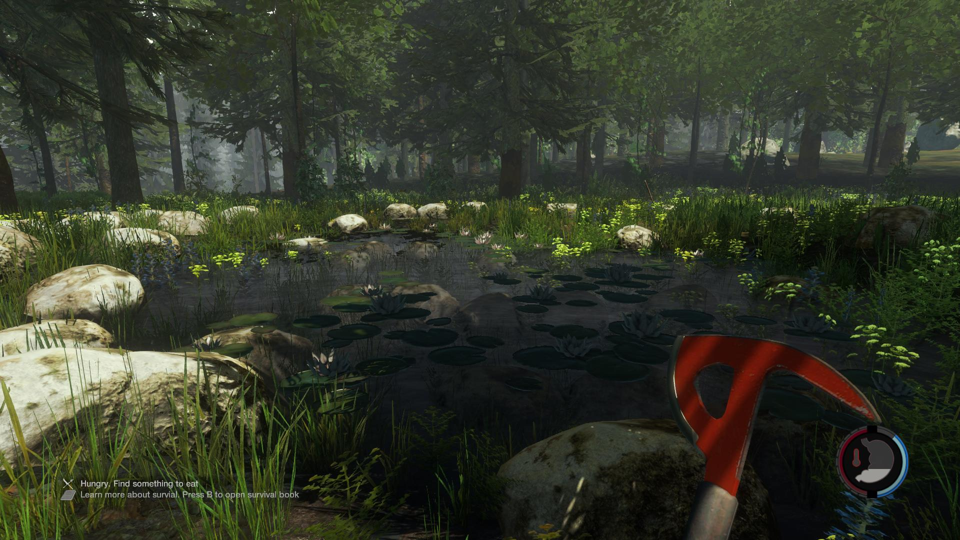 the forest early accces